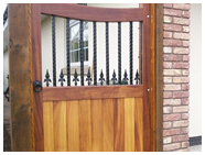 Brothers single decorative iron gate